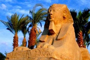 Avvocati in Egitto