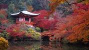 Assenza e dichiarazione di scomparsa in Giappone.