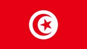 Il riconoscimento e l'esecuzione delle sentenze italiane in Tunisia