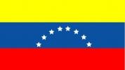 La sottrazione internazionale di minori in Venezuela