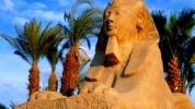 Avvocati in Egitto: le notificazioni degli atti giudiziari e le commissioni rogatorie